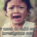 How much do child custody investigators cost
