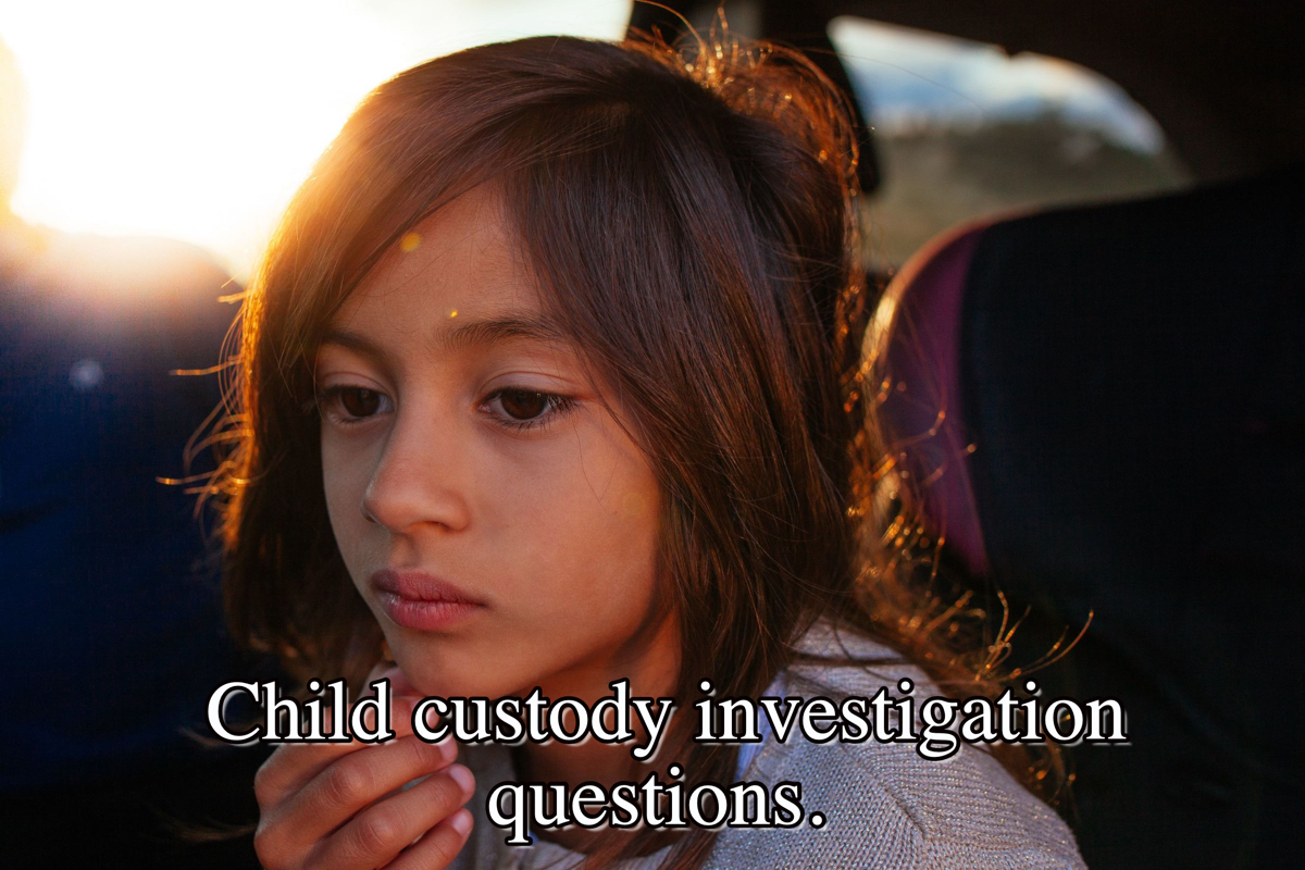 Child custody investigation questions